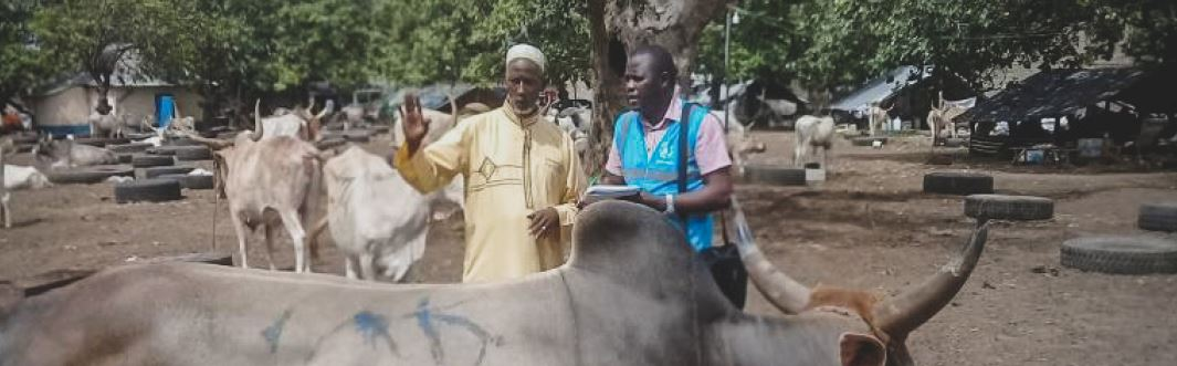 Qurbani: Interview With a Farmer in Senegal