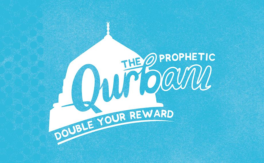 Rules of Qurbani: All Your Questions Answered | Muslim Hands UK